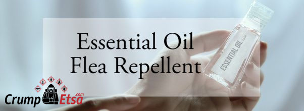 Essential Oil Flea Repellent for Humans