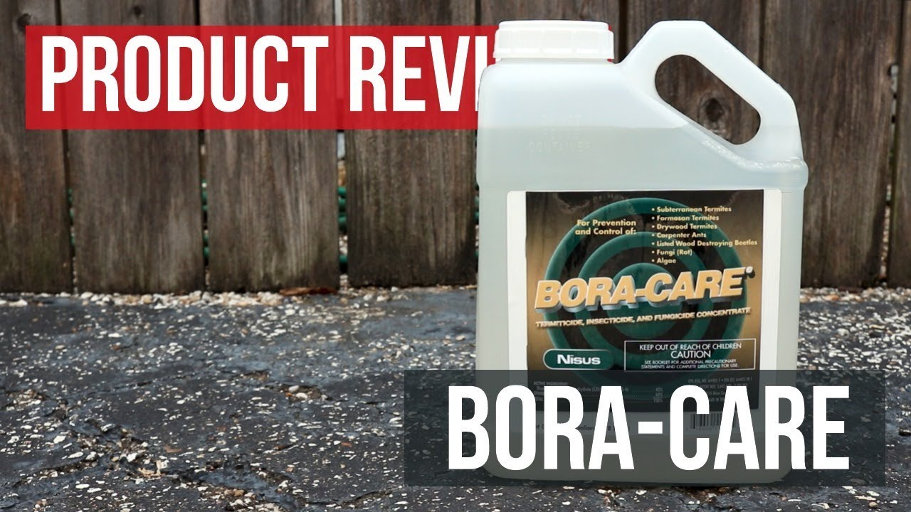 Bora Care Termite Treatment Review Updated 2020 Does It Work